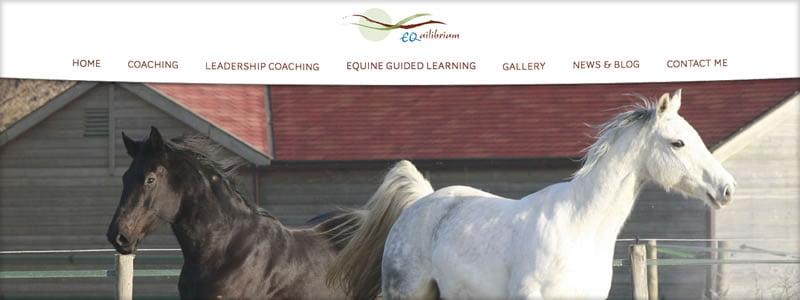 equestrian-web-design-equilibrium